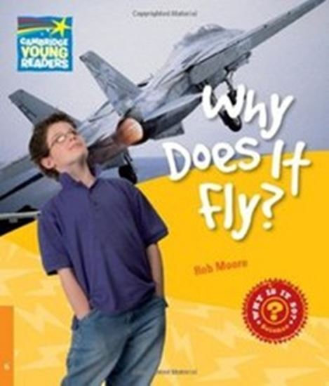 Picture of WHY DOES IT FLY? 6 - FACTBOOK