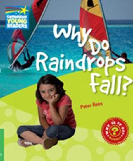 Picture of WHY DO RAINDROPS FALL? - LEVEL 3