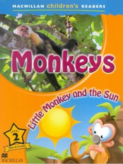 Picture of MONKEYS LITTLE MONKEY AND THE SUN 2