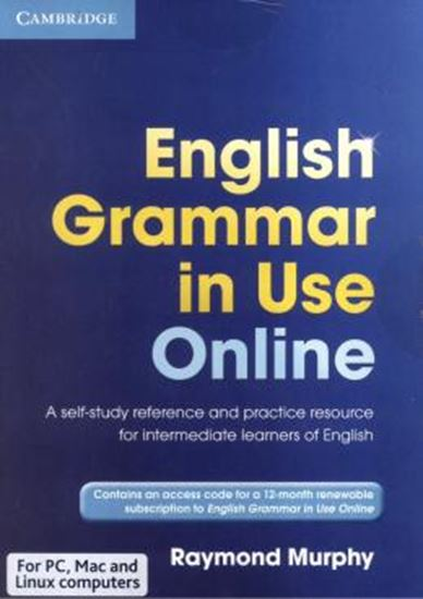 Picture of ENGLISH GRAMMAR IN USE ONLINE