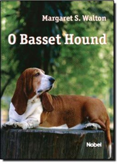Picture of BASSET HOUND, O